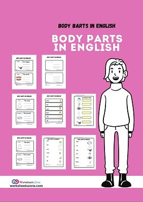 English BODY PARTS worksheets